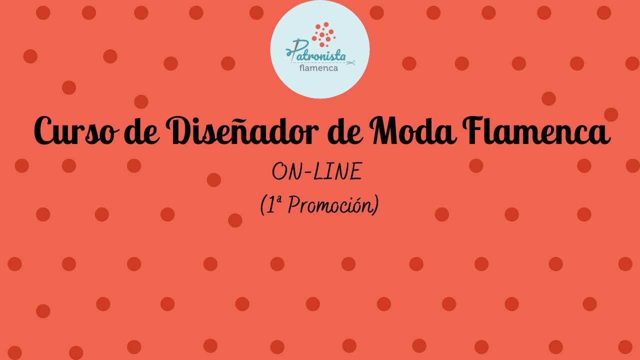 Curso diseñador ONLINE 1º promoción (2)